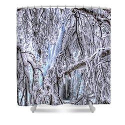 Frozen Falls Shower Curtain by Fiskr Larsen
