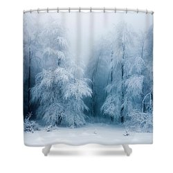 Frozen Forest Shower Curtain by Evgeni Dinev