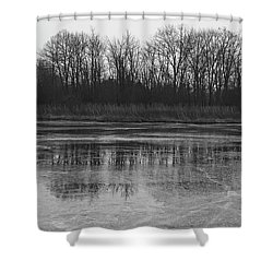 Frozen Forest Shower Curtain