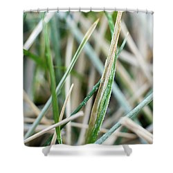 Frozen Grass Shower Curtain
