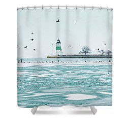 Frozen In Chicago Shower Curtain