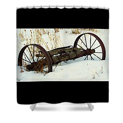 Frozen In Time Shower Curtain by Janice Westerberg
