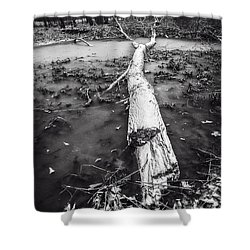 Shower Curtain featuring the photograph Frozen Landscape by Andy Crawford