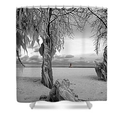 Shower Curtain featuring the photograph Frozen Landscape Of The Menominee North Pier Lighthouse by Mark J Seefeldt