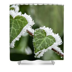 Shower Curtain featuring the photograph Frozen Love by Okan YILMAZ