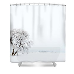 Shower Curtain featuring the photograph Frozen Morning by Yvette Van Teeffelen