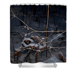 Frozen Rain Shower Curtain