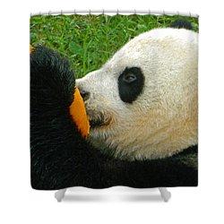 Frozen Treat For Mei Xiang The Giant Panda Shower Curtain