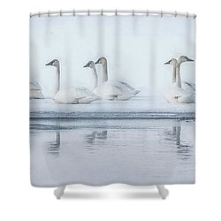 Frozen Tundra Shower Curtain