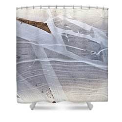Frozen Water On Ground Shower Curtain by Amelia Racca