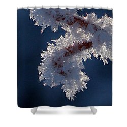 Shower Curtain featuring the photograph Frozen World by Silke Brubaker