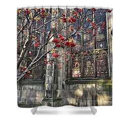 Fruit By The Church Shower Curtain