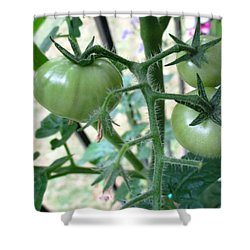 Fruit Or Veg Shower Curtain