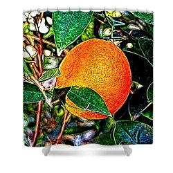 Shower Curtain featuring the photograph Fruit - The Orange by Glenn McCarthy Art