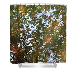 Aqueous Reflections 4 Shower Curtain