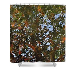 Aqueous Reflections 3 Shower Curtain