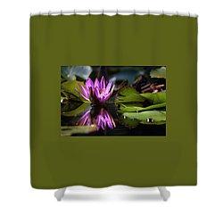 Fuchsia Dreams Shower Curtain by Suzanne Gaff