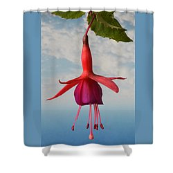 Fuchsia In The Sky. Shower Curtain
