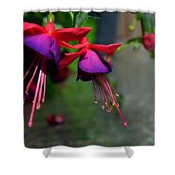 Fuchsia Original Photo Shower Curtain