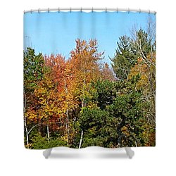 Full Fall Shower Curtain by Jana E Provenzano