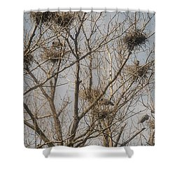 Shower Curtain featuring the photograph Full House by David Bearden