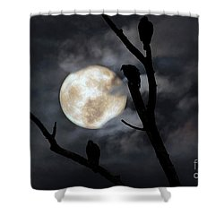 Shower Curtain featuring the photograph Full Moon Committee by Darren Fisher