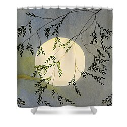 Moon And Tree Branch Painting Shower Curtain