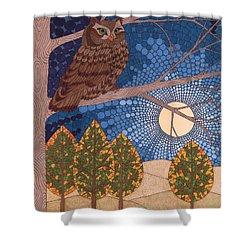 Full Moon Illumination Shower Curtain