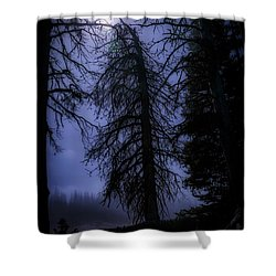 Full Moon In The Woods Shower Curtain