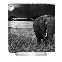 Full Moon Night Shower Curtain by Charuhas Images