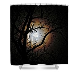 Full Moon Oil Painting Shower Curtain