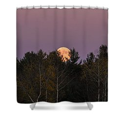Full Moon Over Orchard Shower Curtain