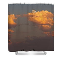 Full Moonrise Over Tree Silhouette Shower Curtain by David Gn