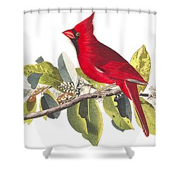 Shower Curtain featuring the photograph Full Red by Munir Alawi