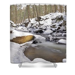 Full Scene  Winter Pool Shower Curtain
