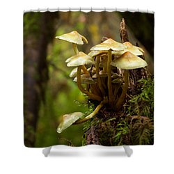 Fungal Blooms Shower Curtain