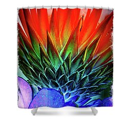 Funky Protea Shower Curtain