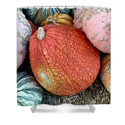 Funky Pumpkins Shower Curtain by Russell Keating