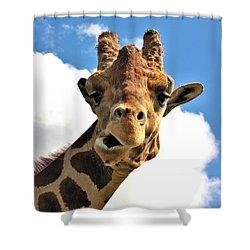 Funny Face Giraffe Shower Curtain by Sheila Brown