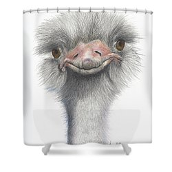 Shower Curtain featuring the drawing Funny Face by Phyllis Howard