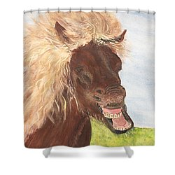Funny Iceland Horse Shower Curtain