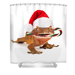 Funny Lizard Eating Christmas Candy Cane Shower Curtain