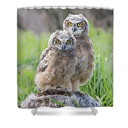 Furrballs Shower Curtain