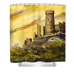 Furstenburg On The Rhine Shower Curtain