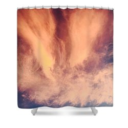 Fury Shower Curtain by Russell Keating