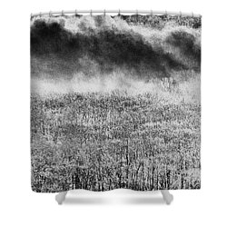 Fury Shower Curtain by Steven Huszar