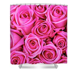 Fuschia Colored Roses Shower Curtain