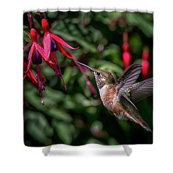 Fuschia Shower Curtain by Randy Hall