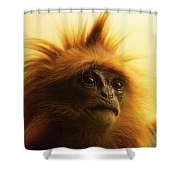 Shower Curtain featuring the photograph Fuzzhead by Xn Tyler