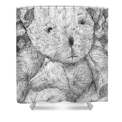 Shower Curtain featuring the drawing Fuzzy Wuzzy Bear  by Vicki  Housel